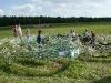 Agro Labyrint